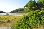 Meertje tussen Limenaria en Aponissos   Agkistri Griekenland   Foto 4 - Foto van De Griekse Gids
