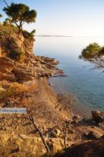 Klein zandstrand tussen de dennebomen bij Skala | Agkistri Griekenland | Foto 3 - Foto van De Griekse Gids