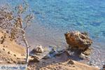 Klein zandstrand tussen de dennebomen bij Skala   Agkistri Griekenland   Foto 5 - Foto van De Griekse Gids