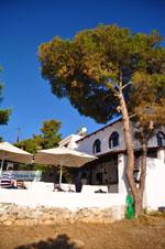 Terras Agistri Club   Agkistri Griekenland   foto 2 - Foto van De Griekse Gids