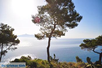 Prachtig Agkistri | Griekenland | De Griekse Gids foto 1 - Foto van De Griekse Gids