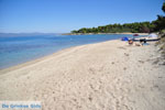 Golden Beach bij Pefkochori   Kassandra Chalkidiki   De Griekse Gids foto 1