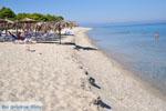 Golden Beach bij Pefkochori | Kassandra Chalkidiki | De Griekse Gids foto 9 - Foto van De Griekse Gids