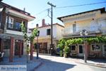 Paliouri | Kassandra Chalkidiki | De Griekse Gids foto 5