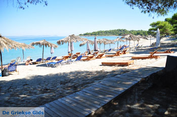 Golden Beach bij Pefkochori | Kassandra Chalkidiki | De Griekse Gids foto 3 - Foto van De Griekse Gids