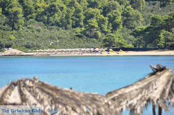 Chrousso beach bij Paliouri | Kassandra Chalkidiki | De Griekse Gids foto 2 - Foto van De Griekse Gids