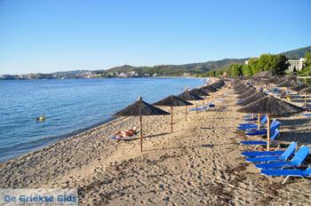 Porto Karras | Sithonia Chalkidiki | De Griekse Gids foto 15 - Foto van De Griekse Gids